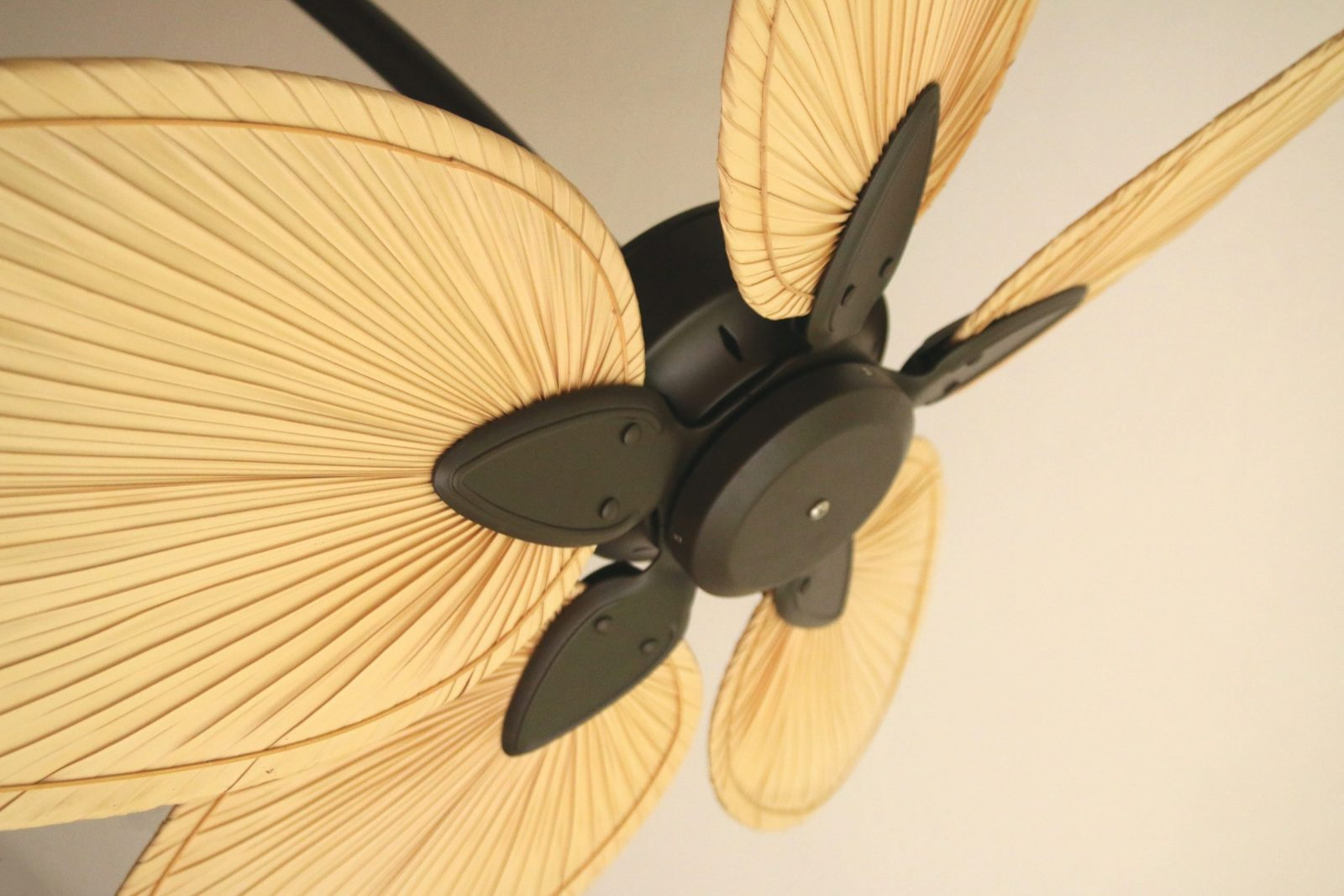 Ceiling Fans hanging from ceiling. Fan looks like palm fronds in a tropical style.